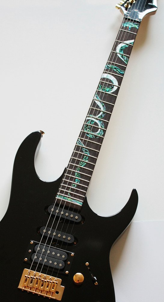 Fretboard Markers Inlay Sticker Decals for Guitar - Twisted Snake by Inlaystickers (Image #3)