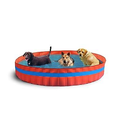 New Plast Piscine.New Plast 3100 My Dog Pool Piscine Pour Chiens 305 X 46