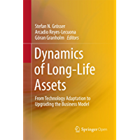 Dynamics of Long-Life Assets: From Technology Adaptation to Upgrading the Business Model (English Edition)