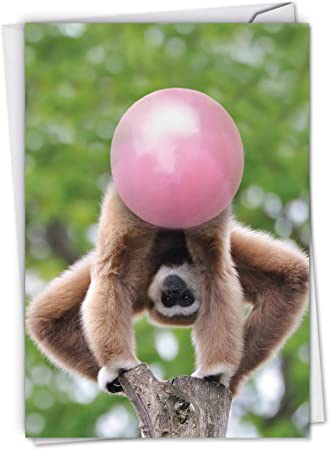 Amazon Com Balloon Animals Monkey Funny Birthday Note Card With Envelope 4 63 X 6 75 Inch Playful Animal Birthday Greeting Card For Kids Children Humorous Gratitude Notecard Stationery C6837abdg Office Products,Bathroom Remodel Bathroom Floor Tile Ideas