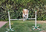 Aggie Trading Co Triple A Dogs Agility Jump/Dog Training/Agility Competition/Practice hurdle/