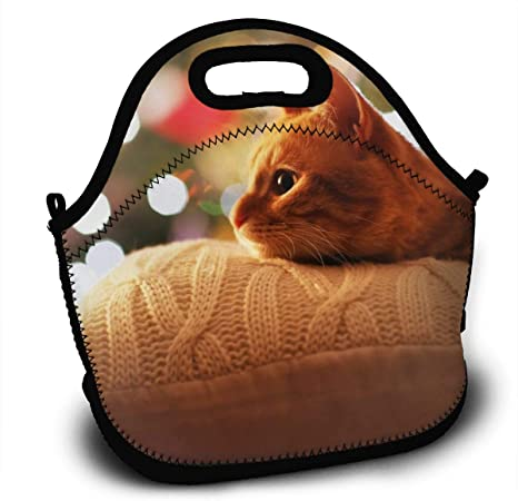 Lunch Bag Reusable An Orange Cat Lay On The Pillow Insulated Lunch Backpack Outdoor Picnic Food Bag For Kids Women And Men Amazon Co Uk Kitchen Home