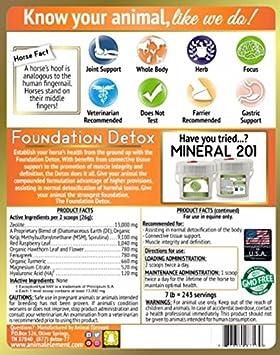 Amazon.com: Foundation Detox - 12 Lb. - All Natural, GMO Free Supplement: Pet Supplies