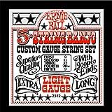 Ernie Ball 5-string Banjo Light Stainless Steel Loop End Set, .009 - .020w