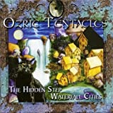 Waterfall Cities: Hidden Step by Ozric Tentacles