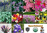 David's Garden Seeds Attractant Set Hummingbird AD7439 (Multi) 10 Varieties 3000 Plus Seeds (Open Pollinated, Heirloom, Organic)