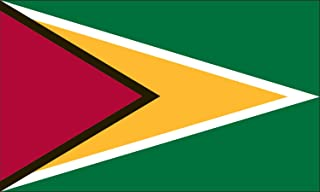 product image for Valley Forge Flag 3-Foot by 5-Foot Nylon Guyana Flag