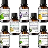 Beauty : Majestic Pure Aromatherapy Essential Premium Oils Set, Includes Lavender, Frankincense, Peppermint, Eucalyptus, Lemon, Clove Leaf, Cinnamon Leaf & Rosemary Oils- Pack of 8 - 10 ml each