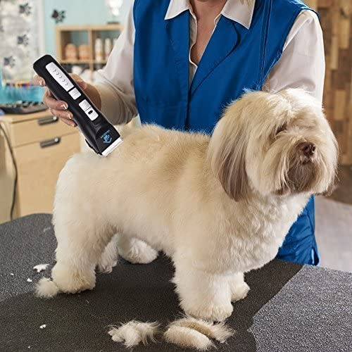 Kit de afeitadora para Mascotas Cortapelo de Aseo para Perros Turbo inal/ámbrico Recargable Perros y Gatos Bajo Nivel de Ruido y Vibraci/ón