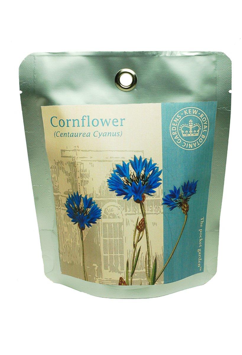 Kew Grow Cornflower Pocket Gardens Kit Canova Garden KPG9507