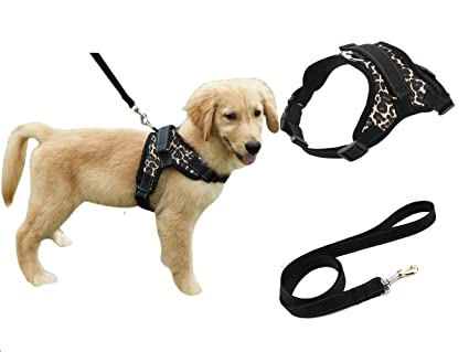 Amazon.com : Heavy Duty Adjustable Pet Puppy Dog Safety Harness with