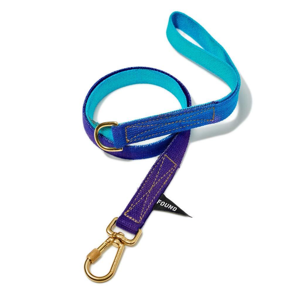 Medium Egg bluee to purple Cotton Dog Leash, Standard, Medium