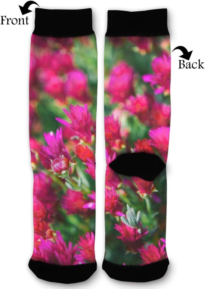 BLongTai Knee High Compression Socks Garden of Pink Petaled Flowers for Women and Men Sport Crew Tube Socks