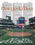 New York Mets Dictionary Art Print CITI Field photo Baseball Art Gift For Him Vintage Dictionary Paper