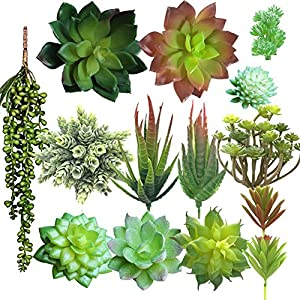 Aisamco 14 Pcs Artificial Succulents,Assorted Faux Succulent Pick,Fake Succulent Bouquet String of Pearls Lover Tears Plant Coastal Cottage Arrangement Mixed Echeveria Succulent Desktop Succulent 43