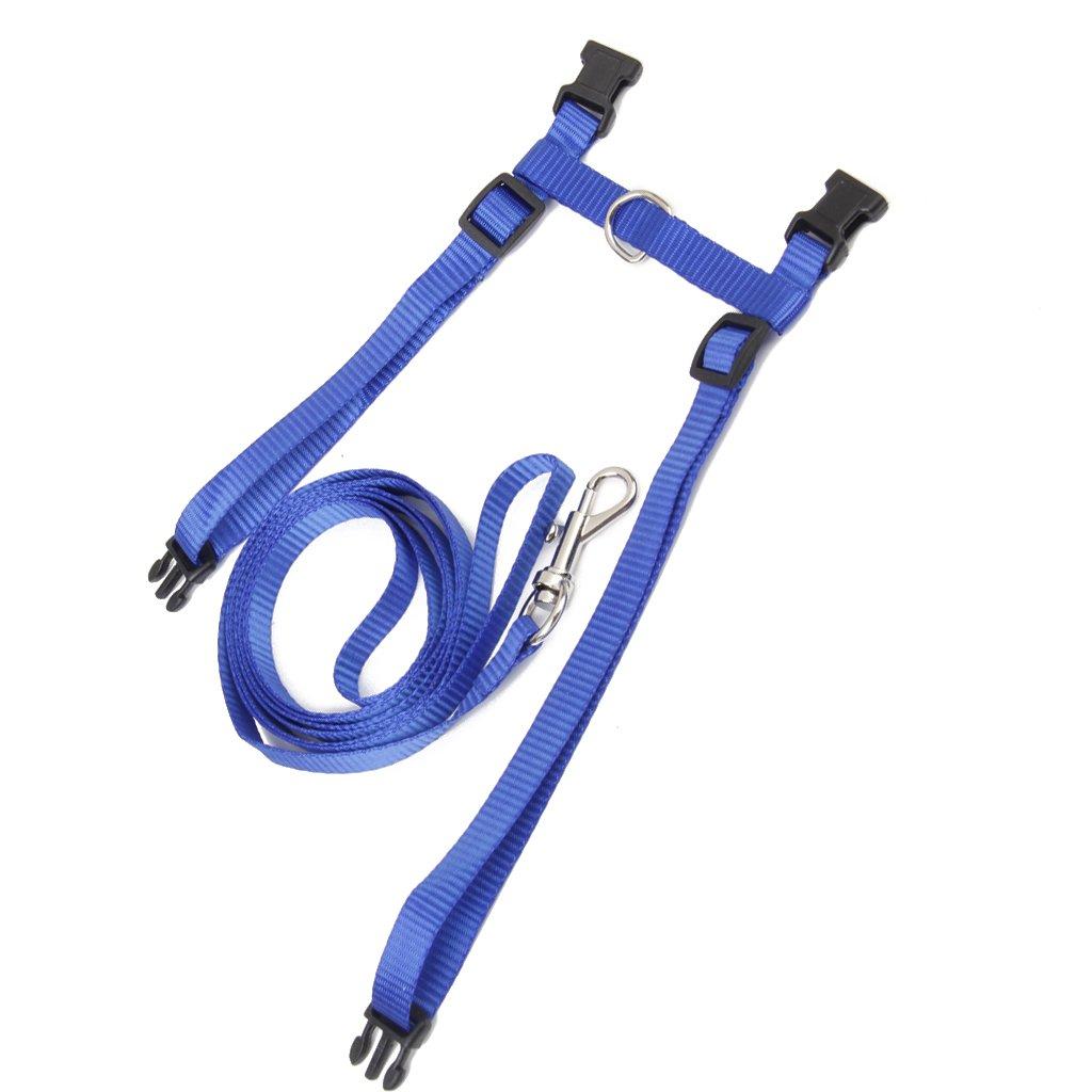 Azul Gato Nylon Correa Ajustable Gatito Cuello De La Correa Correa De Seguridad Arnes Cable De Traccion
