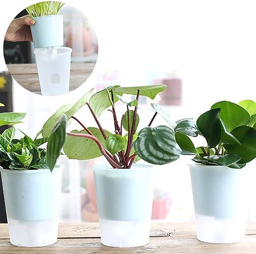 Woopower - Macetero con sistema de autorriego, plástico transparente, para decoración del jardín o del hogar: Amazon.es: Jardín