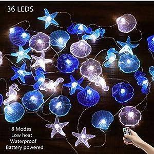 61BsQhwyWjL._SS300_ Best Seashell Wedding Decorations