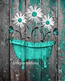 Turquoise Grey Rustic Bathroom WallArt, Daisy Flowers & Butterflies, Farmhouse Country Bath Decor, Littlepiecreations USA Handmade 8''x10'' Photo with 11:x14''' White Mat Wall Pictures