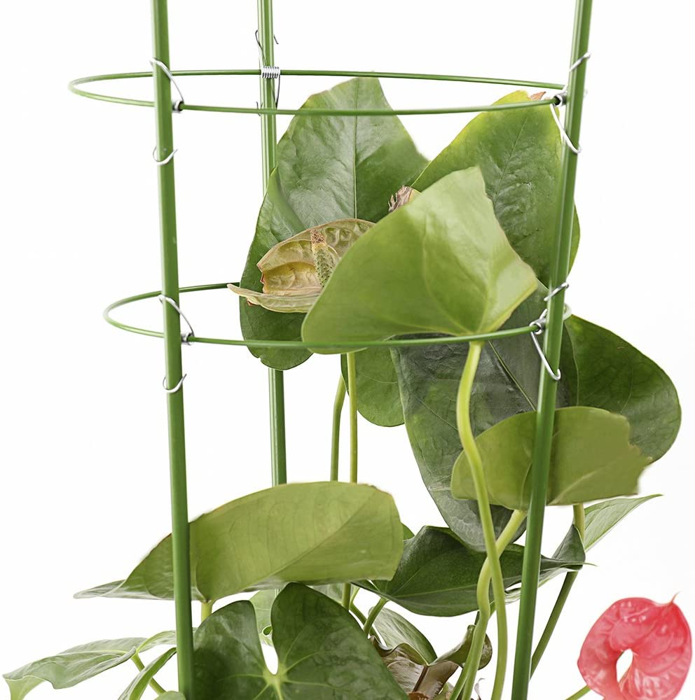 ADSRO 3Pcs Plant Support Ring 3 Ring 600mm Garden Plant Flower Basket Plant Fixed Climbing Gardening Plant Cage