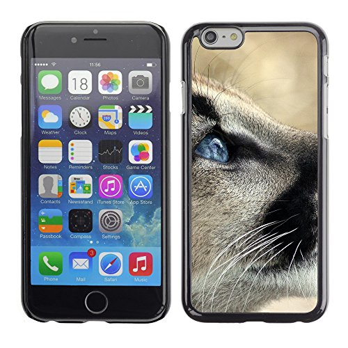 Premio Sottile Slim Cassa Custodia Case Cover Shell // V00003737 pumas 2 // Apple iPhone 6 6S 6G 4.7""