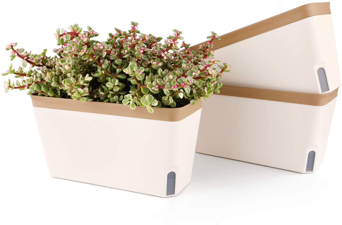 T4U Self Watering Planter Pot Rectangle 10.5 Inch Set of 3, Plastic Plant Pot with Visual Water Level Window Indoor Decorative Garden Flower Pot for Aloe Herb Orchid and Succulent Plants Brown