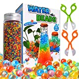OCATO Water Beads Kits Rainbow Mix 30,000 Orbiez Beads Growing Balls, Jelly Water Gel Beads for Spa Refill, Kids Sensory Toys, Vases, Plant, Wedding and Home Décor, Updated Package with 2 Scoops