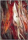 Safavieh Glacier Collection GLA126A Modern Abstract