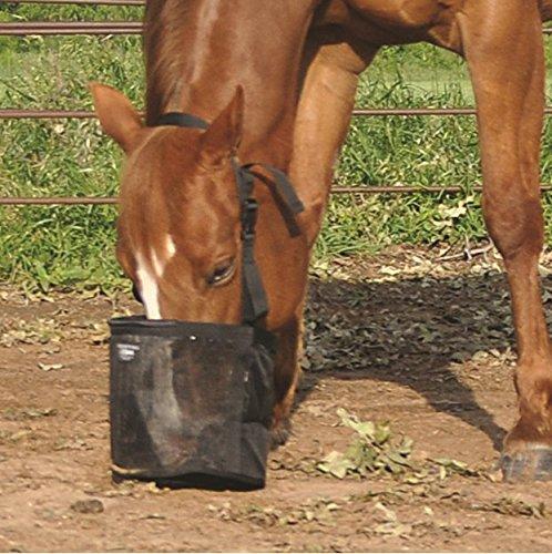 Cashel Feed Rite Bag Draft, Horse, Mini/Foal, or Pony Colors: Black, Blue, Orange or Pink ... ()