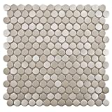 SomerTile MDXMPBST Metallic Penny Round Stainless Steel Over Porcelain Wall Tile, 11.75'' x 11.75'', Silver