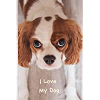 I Love My Dog: Small / Medium Lined A5 Notebook (6 x 9) 100 Pages, Journal To Write In, Diary Notepad for Cavalier King…