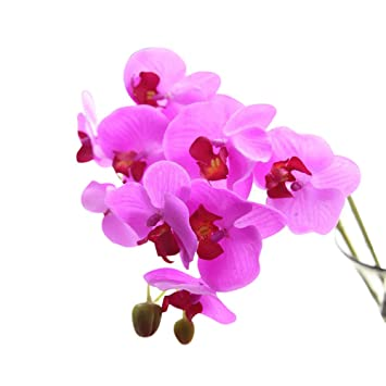 SamMoSon 2019 Flores Artificiales Decoración Jarrones Pequeños Grandes Tallo Largo Altos Mesa Orquideas,Seda Artificial Flores Falsas Phalaenopsis Boda Ramo ...