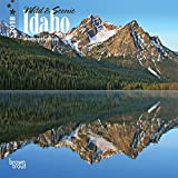 Idaho, Wild & Scenic 2018 7 x 7 Inch Monthly Mini Wall Calendar, USA United States of America Rocky Mountain State Nature