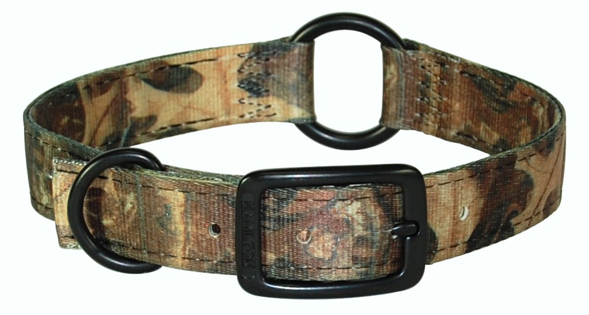 22-Inch Length Hamilton 1-Inch Double Thick Safe-Rite Dog Collar with Center Ring, 22-Inch Length, Leaf Pattern