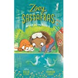 Merhorses and Bubbles (Zoey and Sassafras, 3)