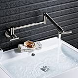 Rozin Wall Mounted Rotatable Extend Spout Kitchen Sink Faucet Single Cold Water Folding Tap Brushed Nickel