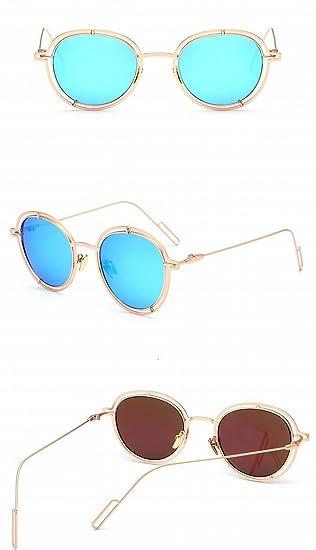 Las Gafas de Sol Forman Las Gafas de Sol Circulares Del ...