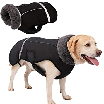 Abrigos de invierno para perros para arnés, Impermeable para ...