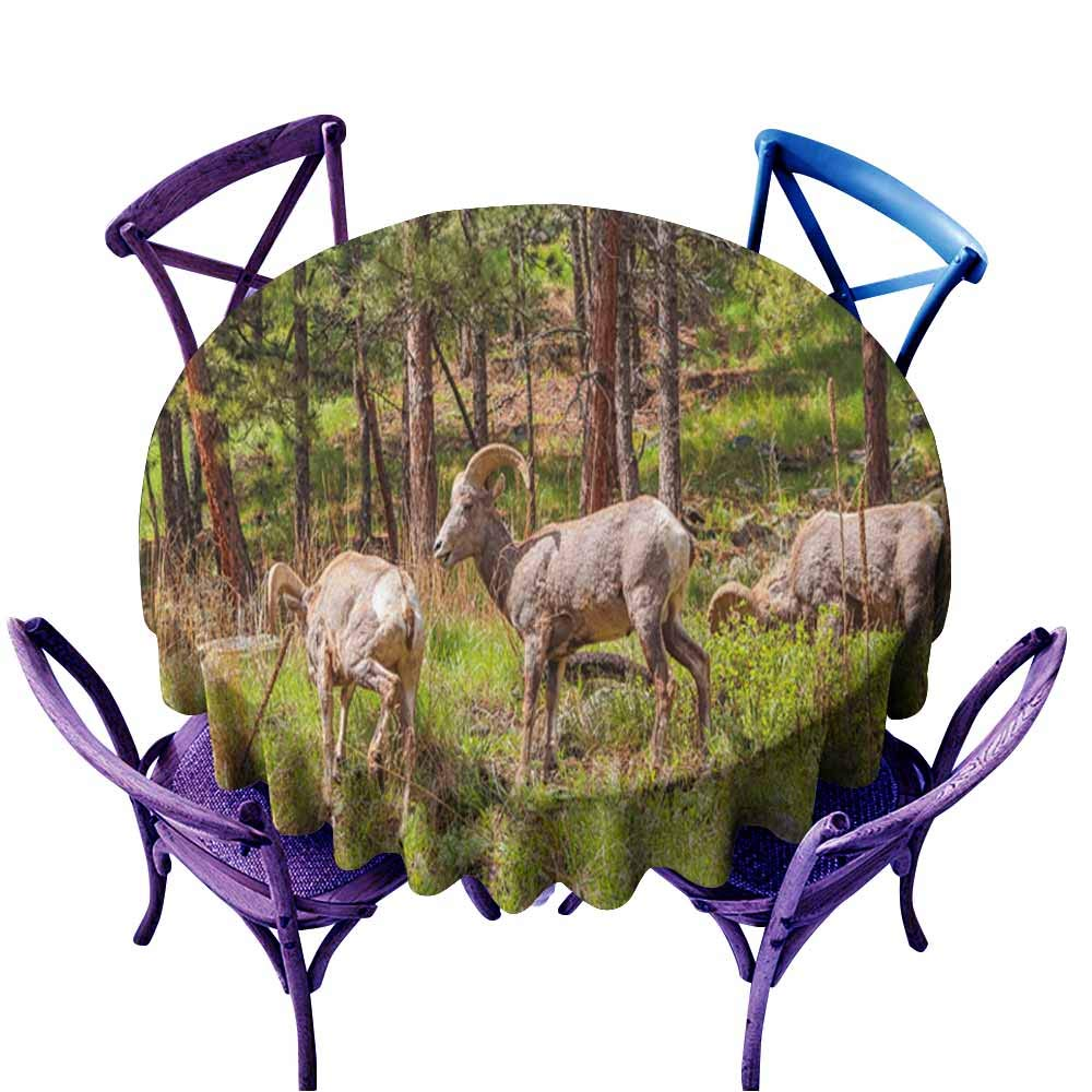 color09 50  Round(130CM) AndyTours Fashions Table Cloth,Bighorn Sheep ram5,High-end Durable Creative Home,70 INCH