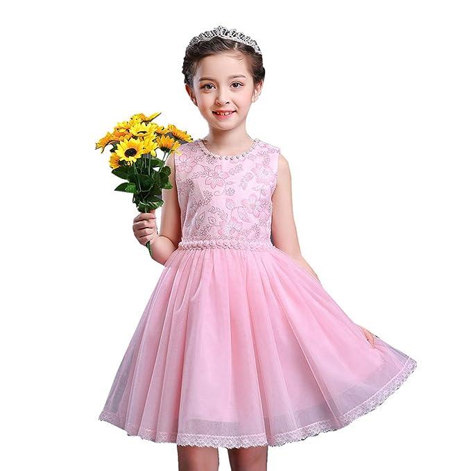 Amazon.com: Little Dragon Pig Kids Girl Vintage Dress Elegant Flower ...