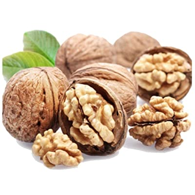QiBest 2pcs Walnut Seeds Bonsai Planting Fruit Home Garden Farm Fruits : Garden & Outdoor