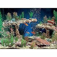 Aquarium Decor Product