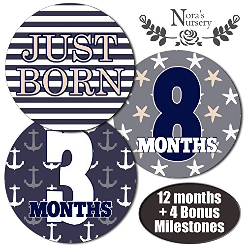 Nautical-Baby-Monthly-Stickers-Great-Shower-Gift-or-Scrapbook-Photo-Keepsake