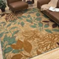 Contemporary Style, Floral Pattern Angelica (8' x 10') Indoor/Outdoor Rug with Antimicrobial and Stain Resistant