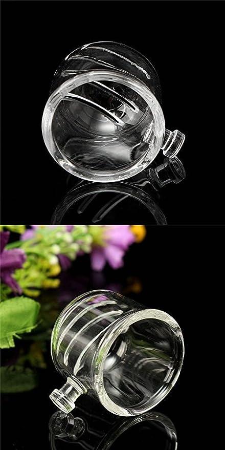 Alimentador de alimentación de peces de cristal de acuario, taza de alimentación de gusanos de