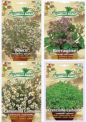 Organic Herb Seeds NON GMO Anice - Borage - Chamomile - Garden Cress