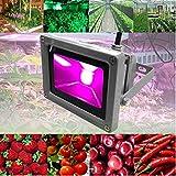 Viktion-wasserdichte-LED-Pflanzenlampe-LED-Pflanzenlicht-Growlicht-LED-Pflanzen-Wachstumslampe-10W-20W-30W-50W-70W-fr-Obst-Gemse-Pflanzen-Innen-Gewchshaus-Glashaus-30-Watt