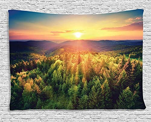 Ambesonne Landscape Tapestry, Aerial of Scenic Sunset Over Forest Hills with Dramatic Colors in Horizon Print, Wide Wall Hanging for Bedroom Living Room Dorm, 80 X 60 , Salmon Green