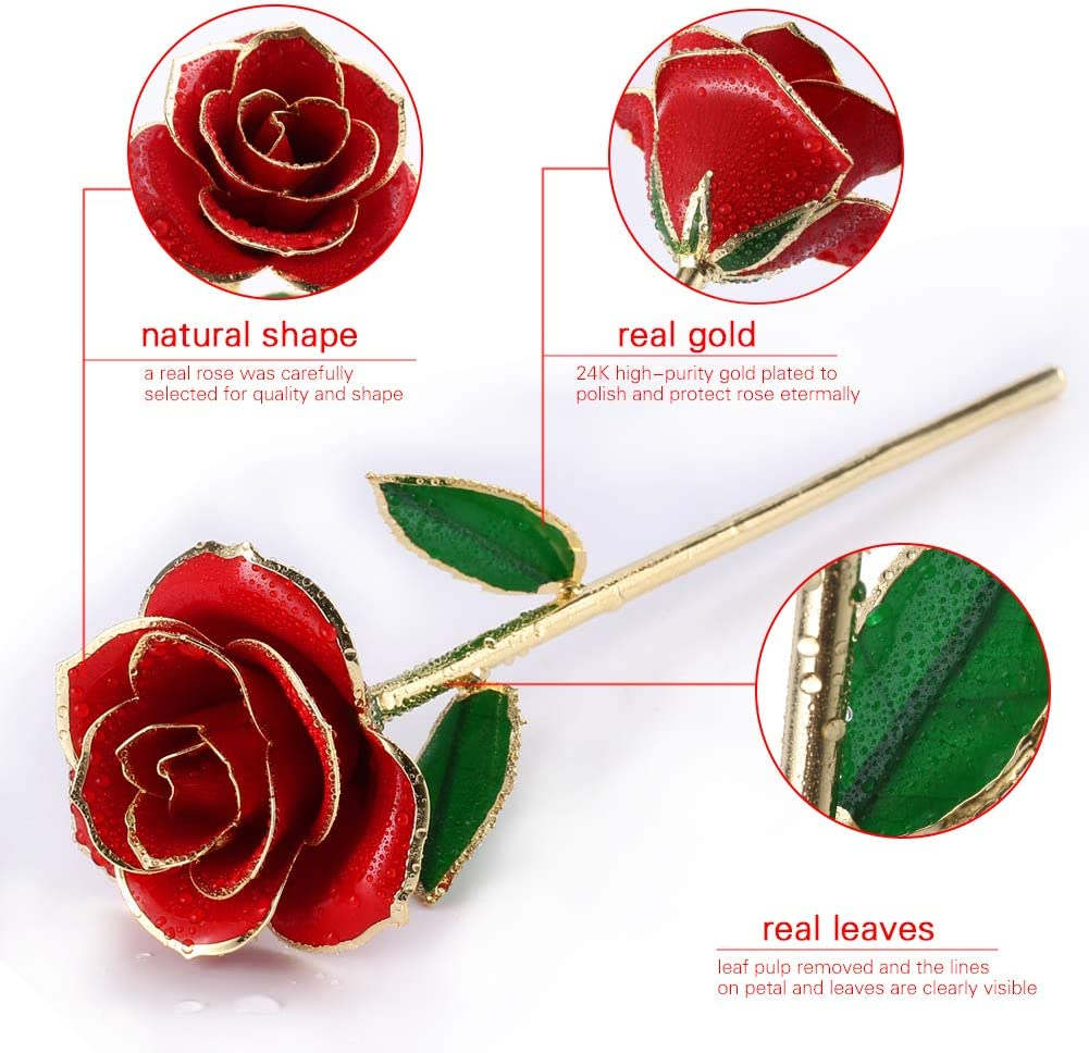 Anniversary Christmas,Decoration 24K Gold Rose Flower//Gold Foil Artificial Forever Rose with Transparent Stand /& Gift Box,Best Romantic Present Ideal for Her on Valentines Day Birthday Mothers Day