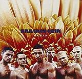 Rammstein: Herzeleid (Audio CD)